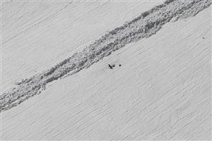 svište pred zimnou norou, salatínska dolina