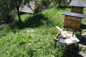 škody na včelínoch 2.